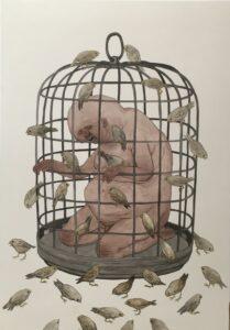 Free Like a Bird – NemO's